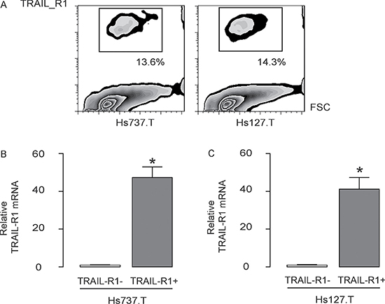Isolation of TRAIL-R1+ GCT cells.