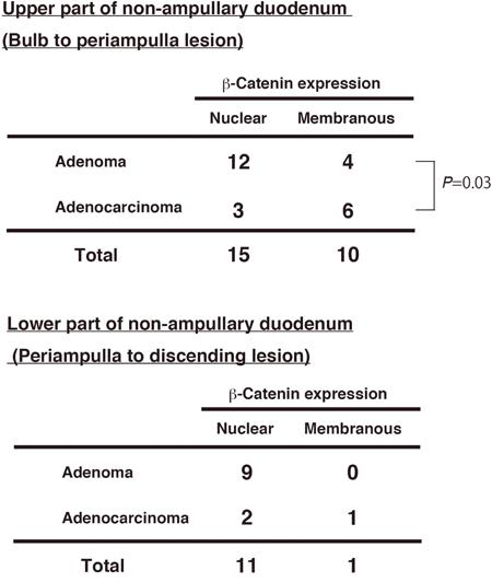 β-Catenin expression and tumor position in non-ampullary adenomas and adenocarcinomas.