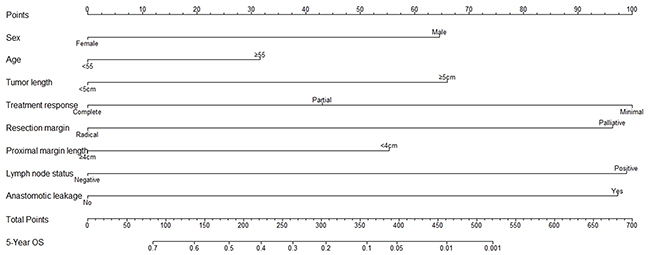 Prognostic nomogram for overall survival of esophageal carcinoma patients after neoadjuvant radiotherapy or chemoradiotherapy.