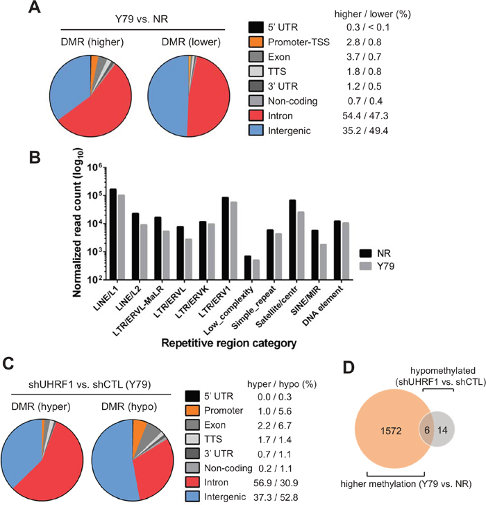 Genome-wide analyses of differentially methylated regions.