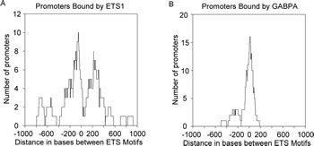 ETS1 exhibits preferred binding to promoters with distantly spaced ETS motifs while GABPA exhibits preference for promoters with closely spaced ETS motifs.