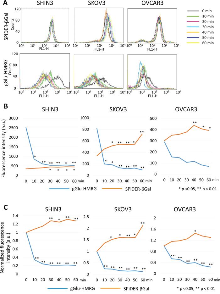 Flow cytometric analysis regarding preservation of fluorescence signal.