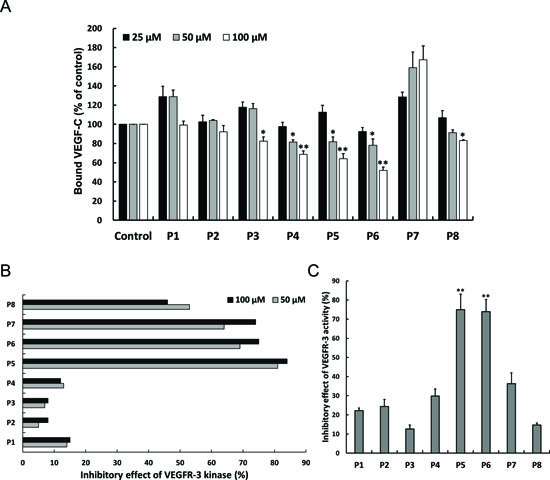 Effects of candidate peptides on antagonizing VEGFR-3.