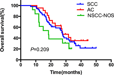 The comparative overall survival curves in patients with different pathological types after SIB-IMRT.