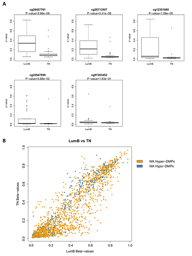 DNA methylation of verified PLAU CpG sites correlates with triple negative (TN) and Luminal B PAM50 intrinsic subtypes in primary breast tumor samples.