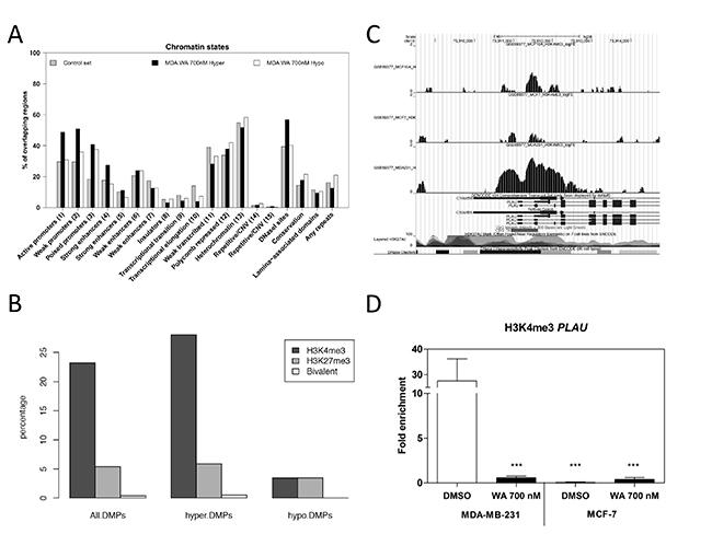 WA treatment decreases gene specific H3K4me3 activation marks.