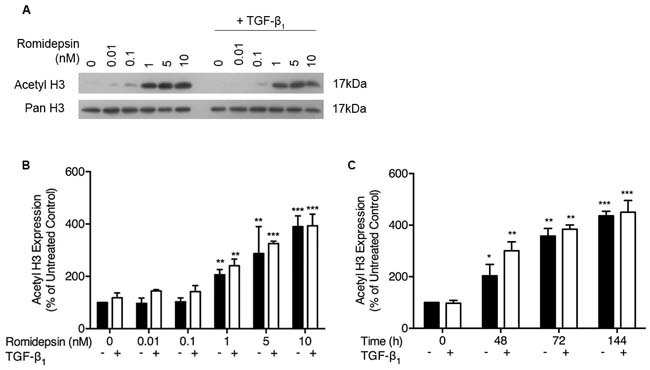 Romidepsin dose and time dependently increased acetylation of histone H3: Fibroblasts were cultured in DMEM/FBS ± TGF-β