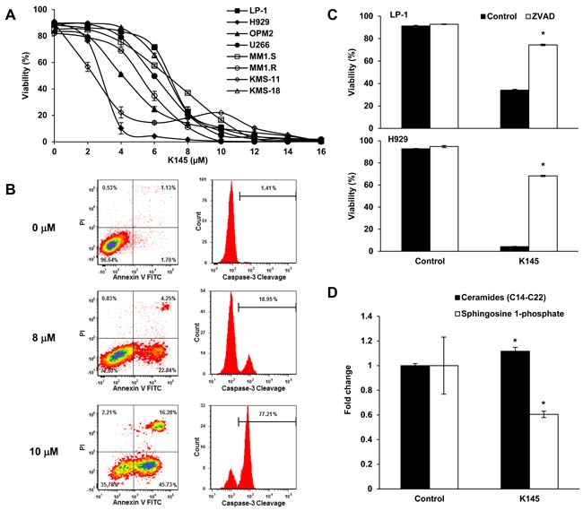 K145 induces myeloma cell death.