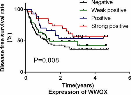 WWOX expression in osteosarcoma tissues was a predictor of disease-free survival in osteosarcoma patients.