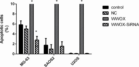 Overexpression of WWOX promoted apoptosis in osteosarcoma cells.