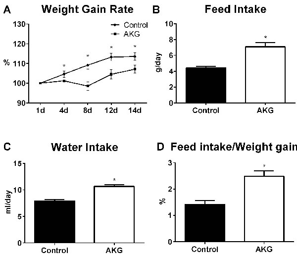 AKG supplementation lowers mouse body weight.