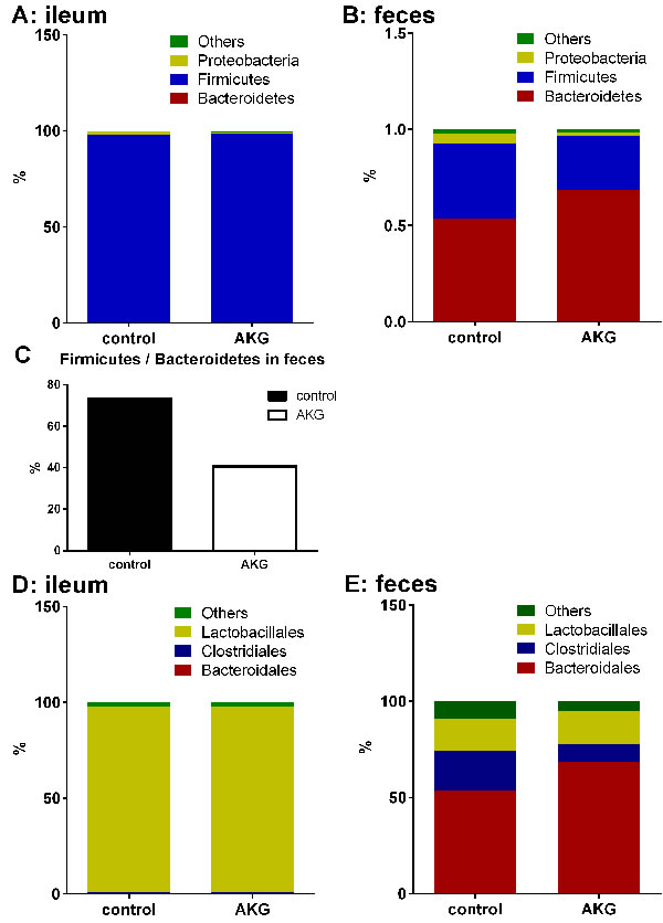 AKG supplementation influences intestinal microbiota.