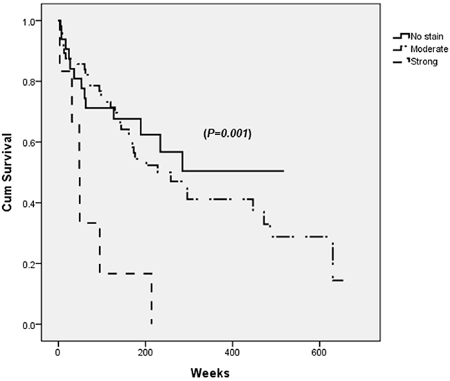 Survival after the curative resection of hepatocellular carcinoma (HCC) according to PDGFRα expression in tumor site.