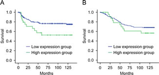 Survival of patients in relation to CTHRC1 expression in colorectal cancers.