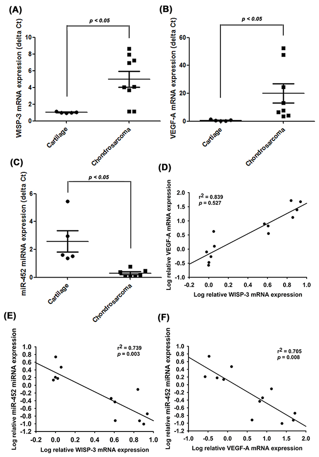 WISP-3, VEGF-A and miR-452 expression have important clinical significance in patients with chondrosarcoma.