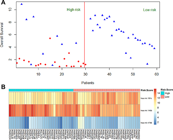 Heatmap for 3 miRNAs expression level and survival status in all 59 patients.