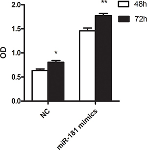 The result of cell proliferation in U937 cell line treated with miR-181c mimics and NC.