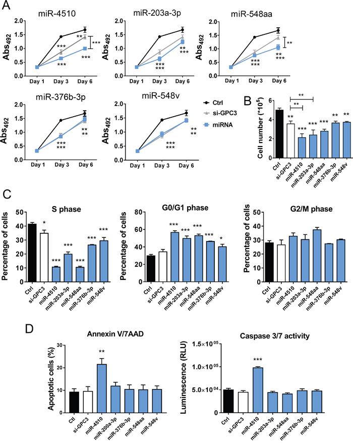 MiR-4510, miR-203a-3p, miR-548aa, miR-376b-3p and miR-548v exert an antitumor effect on HCC cells.