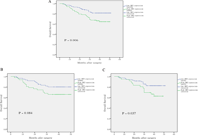 The correlation of IRF-2 expression and overall survival of patients with colorectal cancer.