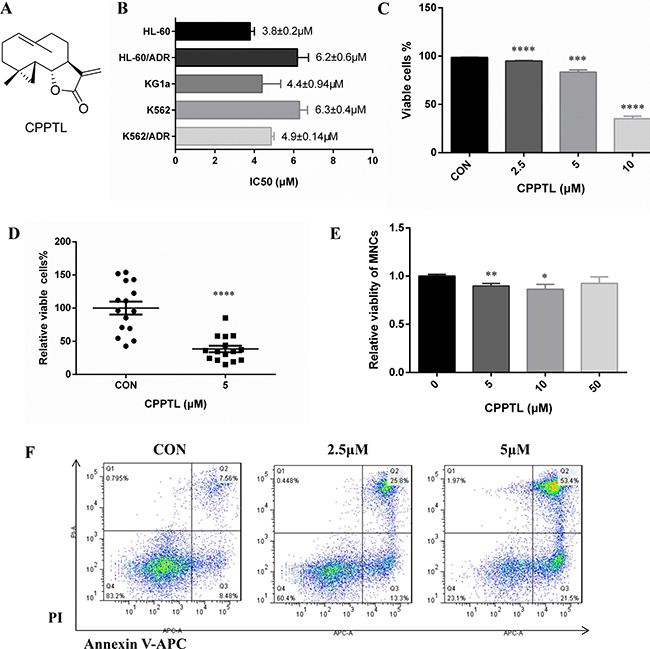 CPPTL inhibited leukemic cell proliferation and induced apoptosis.