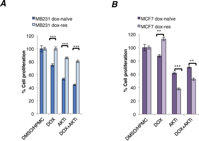 Cytotoxicity of A-443654 and doxorubicin in doxorubicin-naïve and doxorubicin-resistant human breast cancer cell lines.