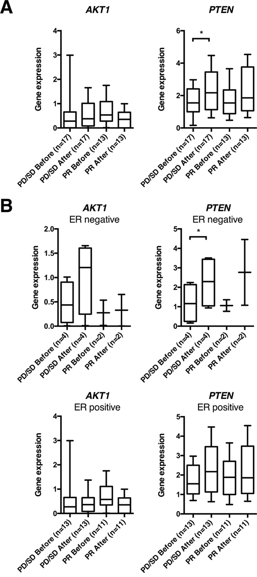 AKT1 and PTEN gene expression in human breast cancers before and after 16 weeks of doxorubicin treatment.