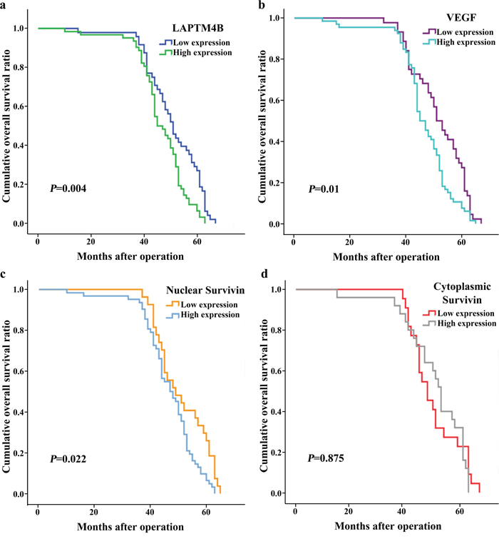 Kaplan-Meier curves for overall survival in 110 patients with breast cancer.