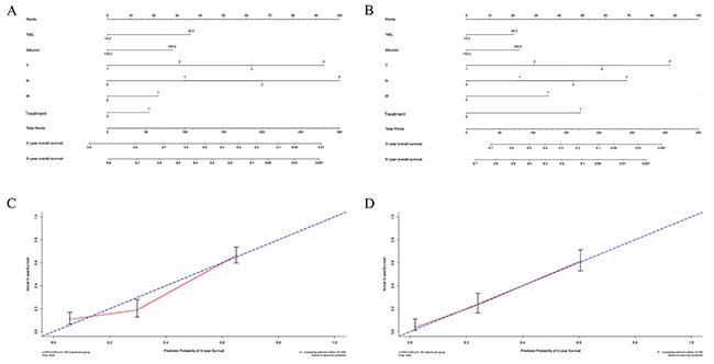 Nomogram for predicting gastric cancer outcomes.