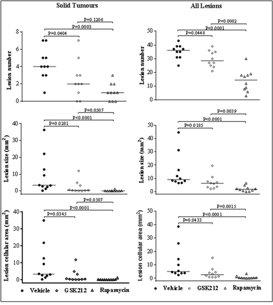 Efficacy of GSK2126458 and rapamycin on renal tumours in Tsc2+/- mice.
