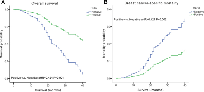 Weighted Kaplan–Meier curves of overall survival (OS) and breast cancer-specific mortality (BCSM) based on the HER2 status.