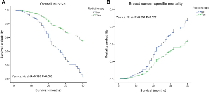 Weighted Kaplan–Meier curves of overall survival (OS) and breast cancer-specific mortality (BCSM) based on radiotherapy.