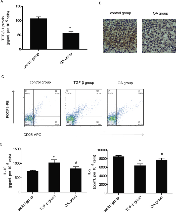 Effects of OA on TGF-β1 production and T cells' response to TGF-β1.