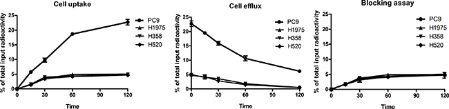 Cell uptake, efflux and blocking assay of 99mTc-HYNIC-MPG in NSCLC cell lines.