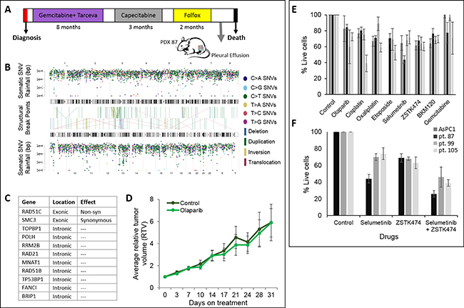 PDX with an unstable genome and in vitro and in vivo sensitivity assay.