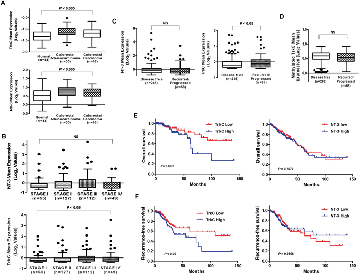 Correlation of TrkC with CRC pathogenesis and patient survival.