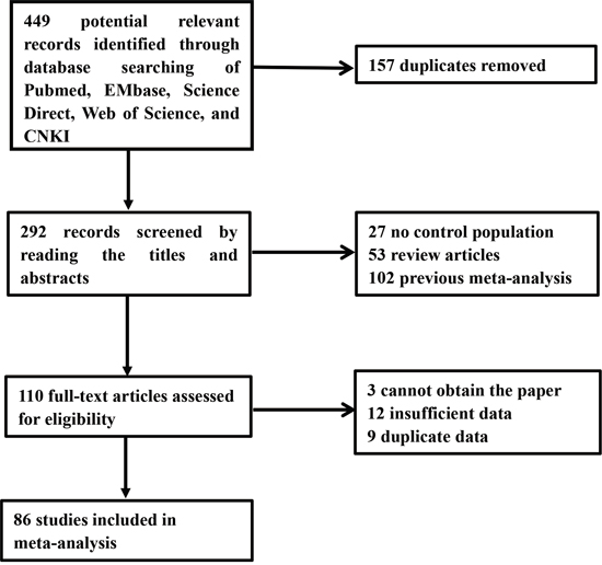Flow chart showing the selection process for the included studies.