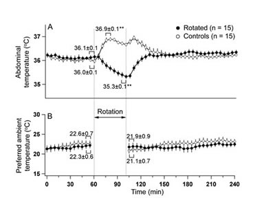 Fig 2: Provocative motion elicited hypothermic responses (A) and had no effect on the preference for the ambient temperature (B) in rats.