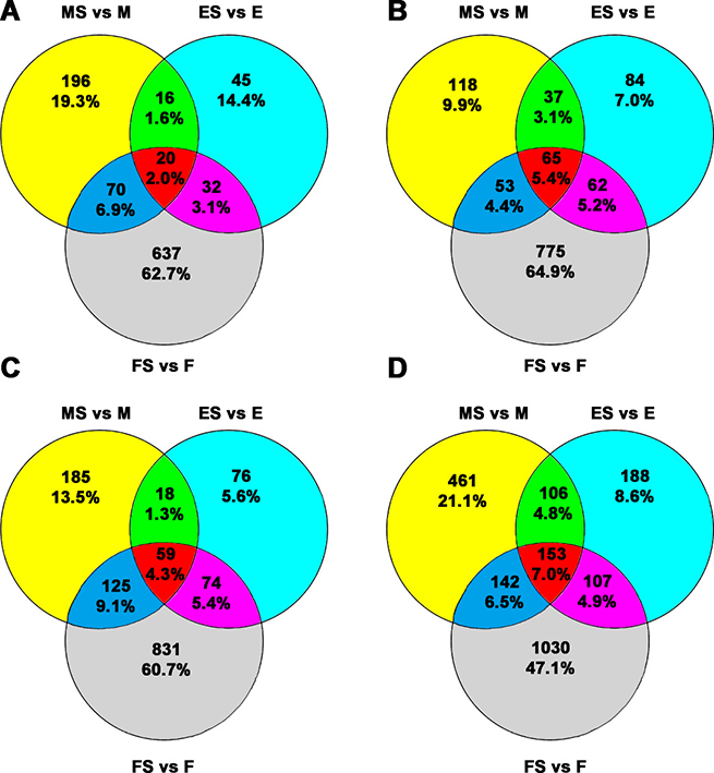 Venn diagram for the common and exclusively expressed lncRNAs and mRNAs from each group.