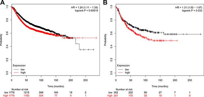 Survival curves of ductal tumor patients associated with VCAN and COL4A1.