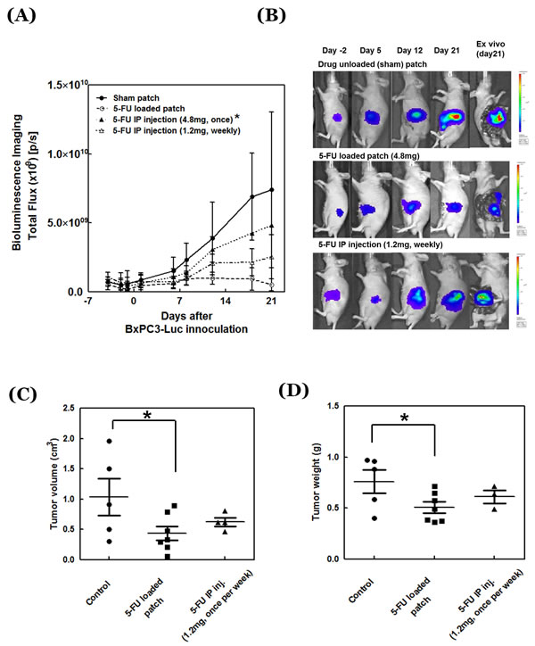 Antitumor efficacy of 5-FU-release patch.