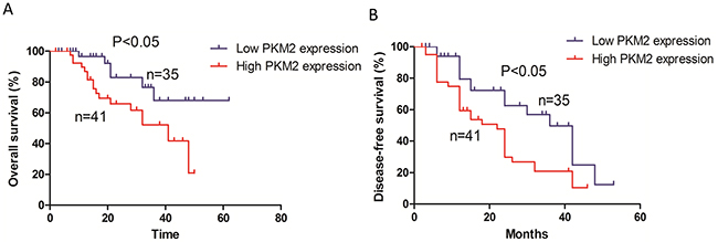 Kaplan-Meier survival analysis of 76 patients with lung adenocarcinoma.