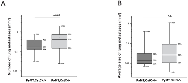 Effect of cystatin C deficiency on pulmonary metastases of PyMT mammary tumors.