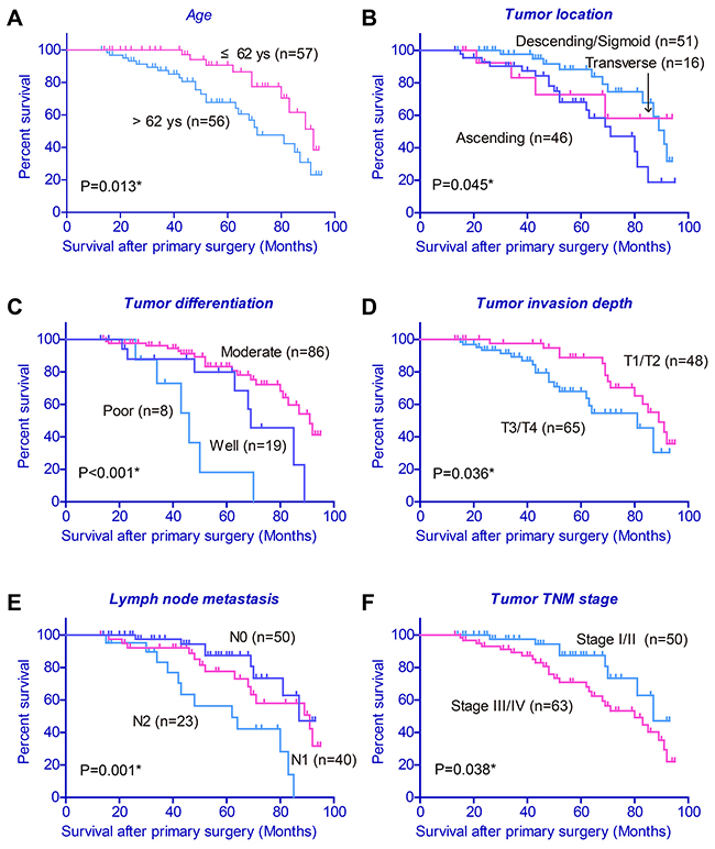 Kaplan-Meier survival curve with respect to clinicopathological characteristics of colon cancer patients.