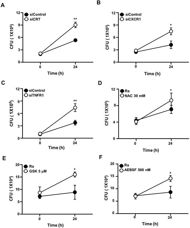 The CRT/CXCR1/TNFR1 complex regulates the intracellular survival of Mtb.