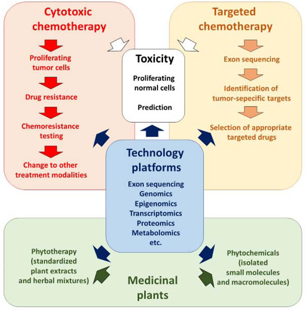Integration of phytochemicals and phytotherapy into standard academic oncology.