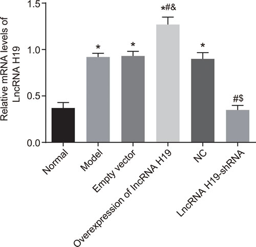 Expressions of Lnc RNA H19 in hippocampal tissues of rats in each group measured by qRT-PCR.