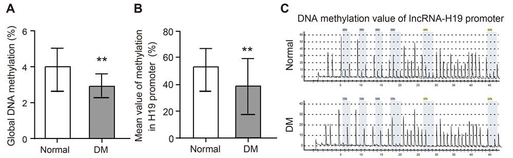 The expression of whole genome methylation in rat model of the hippocampal tissues and the expression of methylation from H19 promoter region of LncRNA H19.