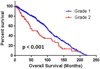 The comparison of overall survival between patients with grade 1 and grade 2.