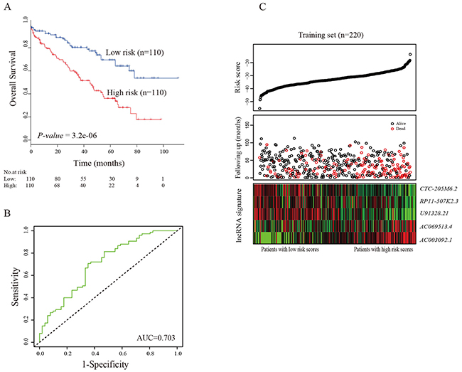 The five-lncRNA related risk score model predicts overall survival of patients with ccRCC in the training set.
