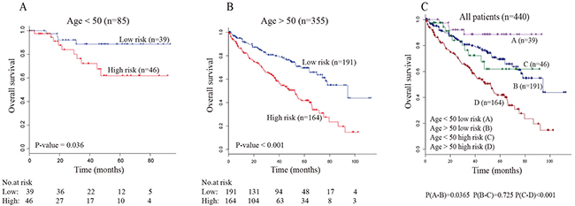 Stratification analyses of all patients adjusted to age using the five-lncRNA signature.